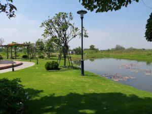 Đất trồng cây, đất nông nghiệp, nhà vườn tại Cù lao Long Phước Thủ đức